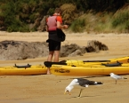 Nový Zéland - Abel Tasman National Park: Přestávka